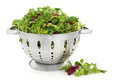 Lettuce Salad Leaves Royalty Free Stock Image
