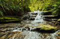 Leura cascades in the blue mountains national park australia Stock Photo