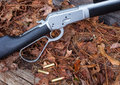 Lever action rifle black and silver colored on fall leaves Royalty Free Stock Photography