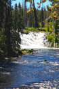 The Lewis Falls in the Yellowstone Royalty Free Stock Image