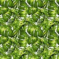 Watercolor Seamless Pattern. Hand Painted Illustration of Tropical Leaves and Flowers. Tropic Summer Motif with Liana Pattern.