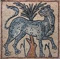 Libya Cyrenaica Byzantine mosaic leopard Royalty Free Stock Photo