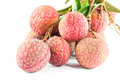 Lichi fresco Foto de Stock Royalty Free