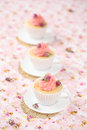 Lichi rose cupcakes Imagem de Stock Royalty Free