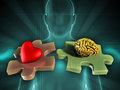 Life balance human figure on background with an heart and a brain on two matching puzzle pieces digital illustration Stock Photography