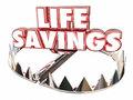 Life Savings Protect Money Wealth Resources Bear Trap Royalty Free Stock Photo