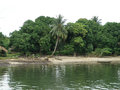 Life in the tropics huts of local residents along river bank warri nigeria tropical africa Stock Photography