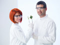 Life versus technology close up of two scientist in a laboratory comparative analyzing a plant and a hard disk Royalty Free Stock Photos