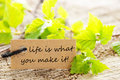 Life is what you make it label a natural looking with green leaves and the saying on Stock Images