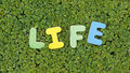 Life written with colored letters in a green area Stock Image
