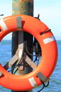 Lifebuoy by sea concept for rescue lifesaving security or marine life Royalty Free Stock Image