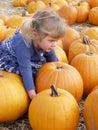 Lift pumpkin Stock Photo