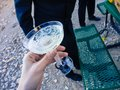 Lifting a Retro Glass of bubblychampagne at picnic Royalty Free Stock Photo