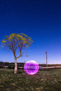 Light ball under tree in the evening Stock Image