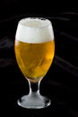 Light beer refreshing in a cold glass served on a dark bar Royalty Free Stock Photo