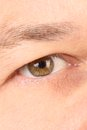 Light brown male eye close up as an independent background Stock Photography
