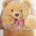 A light brown teddy bear Stock Photography