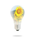 Light bulb with beautiful flower inside Stock Photos