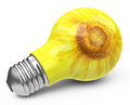 The light bulb d generated picture of a sunflower Royalty Free Stock Photo