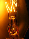Light bulb and filaments Royalty Free Stock Photos