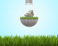 Light bulb with grass and dollars inside on sky background, bright green field around Royalty Free Stock Photo