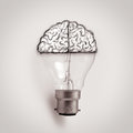 Light bulb with hand drawn brain as creative idea Royalty Free Stock Photo