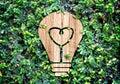 Light Bulb wood icon and heart shape inside on green leaf wall,E