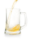 Light golden beer pouring into empty glass pint Royalty Free Stock Photo