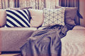 Light gray l shape sofa with varies patern pillows and colos in living corner Royalty Free Stock Image