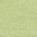 Light green paper background Royalty Free Stock Photography