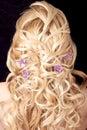Light Hairdress Royalty Free Stock Photo