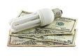 Light and money bulb dollar Stock Image