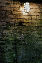 Light near mossy brick wall Stock Photos