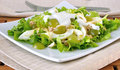 Light salad with yogurt Stock Images