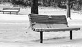 Light snow on a park bench the first of the winter season covers the ground benches in local Royalty Free Stock Photo