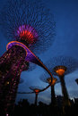 Light and sound show gardens by the bay at night super trees singapore Royalty Free Stock Photography