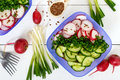 A light vitamin spring - summer salad with fresh cucumbers, radish and green onions Royalty Free Stock Photo