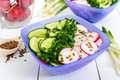 A light vitamin spring - summer salad with fresh cucumbers, radish Royalty Free Stock Photo