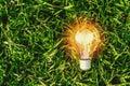 lightbulb on green grass. concept energy Royalty Free Stock Photo