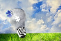 Lightbulb on nature view, the concept of ecology Royalty Free Stock Image