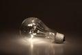 Lightbulb Royalty Free Stock Photo