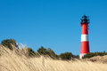 Lighthouse behind beach grass Royalty Free Stock Photo