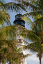Lighthouse behind trees Royalty Free Stock Photo