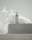 Lighthouse At Newhaven Harbour