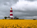 Lighthouse on rape field cloudy sky Royalty Free Stock Photography