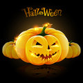 Lighting halloween pumpkin the pumpkins on dark background Royalty Free Stock Image