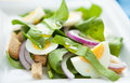 Lightweight spring salad with spinach and egg Royalty Free Stock Image