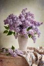 Lilac bouquet Royalty Free Stock Image