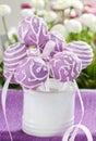 Lilac cake pops in white ceramic jar Royalty Free Stock Photo