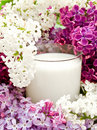 Lilac flower and milk Royalty Free Stock Photo